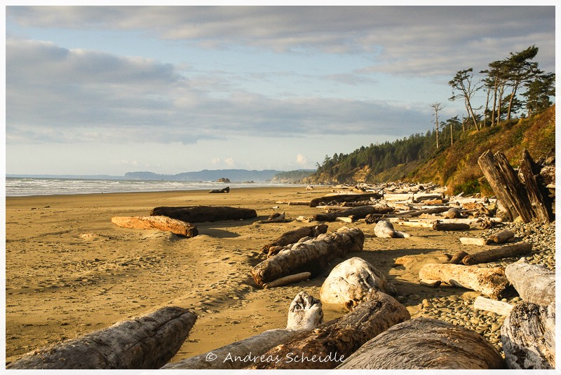 Beach Olympic NP