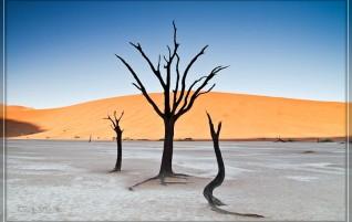 Namibia – Am Ende der Regenzeit